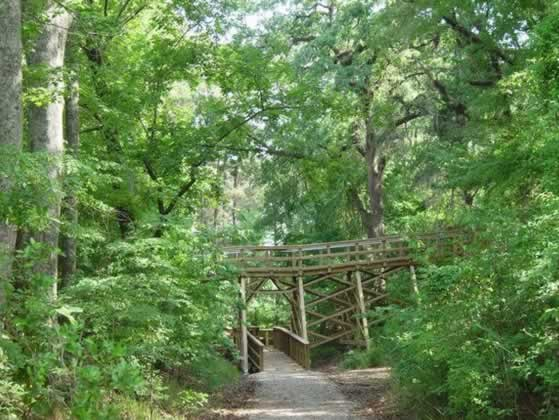 One of the boardwalks at the Forts Randolph and Buhlow State Historic Site