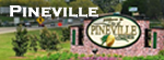 Pineville Louisiana Tourism, Things to Do, Maps and more